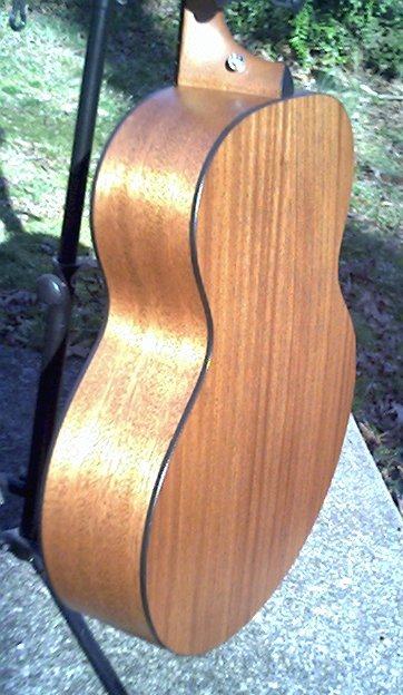 image title is /guitars/Taylor 355 back view