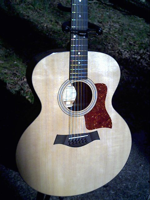 image title is /guitars/Taylor 355 front view
